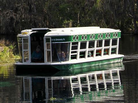 Silver Springs Glass Bottom Boat by Glass Bottom Boats Silver Springs State Park