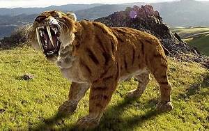 Remains of a Sabre toothed tiger the size of a horse found ...