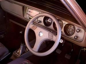 Nissan 1400 Steering Box Oil