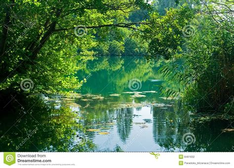 beautiful river scene croatia stock photo image