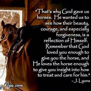 Funny Horse Quotes And Sayings. QuotesGram