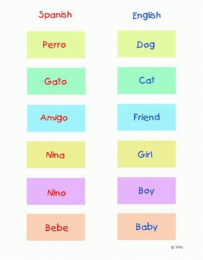 Spanish English Matching Word Match Learning Games