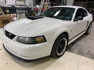Used 2003 Ford Mustang Mach 1 Coupe RWD for Sale (with Photos) - CarGurus