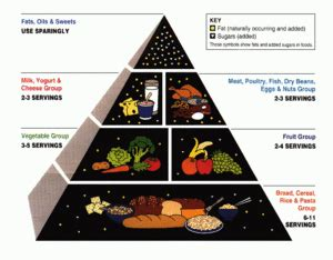 pyramide alimentaire wikip 233 dia