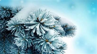 January Wallpapers Desktop Px Nature Winter