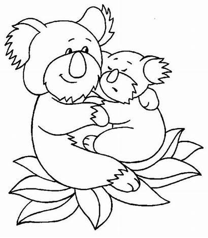 Koala Coloring Bear Hug