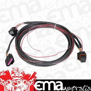 Holley Efi Gm Drive By Wire Harness Ho558