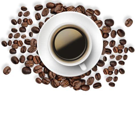 de cagne maison maison du caf 233 senseo l or le caf 233 l or espresso ma tradition brazil