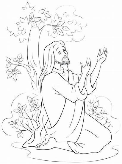 Jesus Coloring Garden Gethsemane Praying Prayer Cartoon