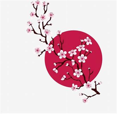 Sakura Cherry Japan Blossom Clipart Japanese Blossoms