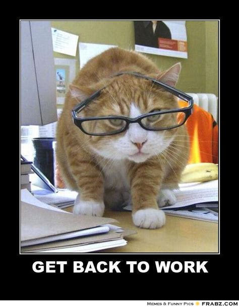 Get To Work Meme - lolcats birthday memes