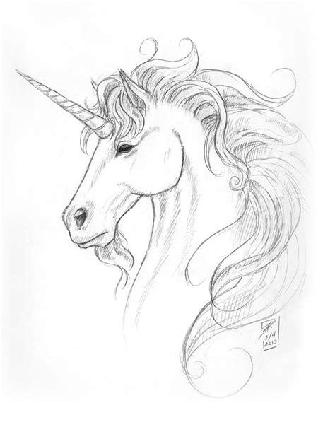unicorn portrait drawing by woods