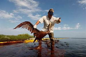 Oil Spill Fines Will Pay For 300 New Gulf Conservation Jobs