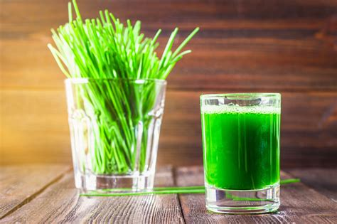 juice wheatgrass benefits major fotolia health beauty hair loss weight celery skin