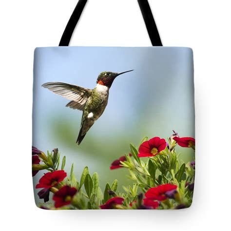 17 best images about hummingbird gifts on pinterest