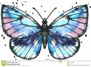 Vector Blue Butterfly In Watercolor Stock Vector - Image