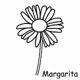 Colorear Margaritas Imprimir Dibujos Margarita Papunet Meteo Imagui Flor Pintar Kukat Bricolage Saisons Album Colorir Coloring Technologie Plantillas Margarida Flower sketch template