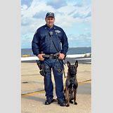American Police Uniform Swat | 600 x 968 jpeg 91kB