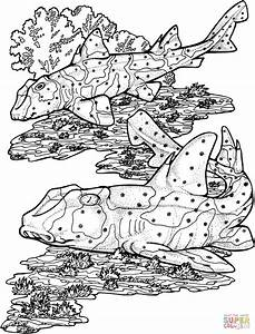 Horn Sharks coloring page | Free Printable Coloring Pages
