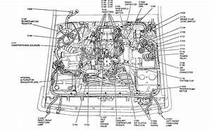 34 1989 Ford F150 Radio Wiring Diagram