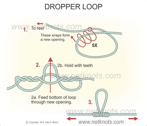 dropper loop knot fishing tie knots line rig drop shot fly netknots using two yellowtail question costruzione palamito facile tapatalk