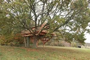 Constructeur Cabane Dans Les Arbres : cabane des deux ch nes nidperch constructeur de cabane ~ Dallasstarsshop.com Idées de Décoration