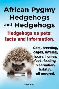 new pygmy hedgehogs and hedgehogs hedgehogs as pets facts and informat 1909151122 ebay