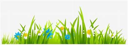 Grass Flowers Clipart Peter Rabbit Royalty Library