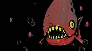 fish, Horror, Piranhas HD Wallpapers / Desktop and Mobile ...