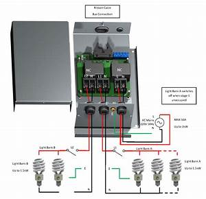 Module Wiring Diagram