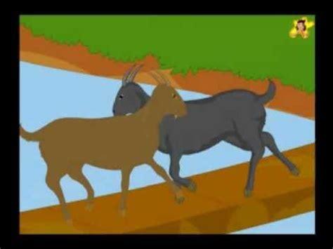 silly goats  short story  kids youtube