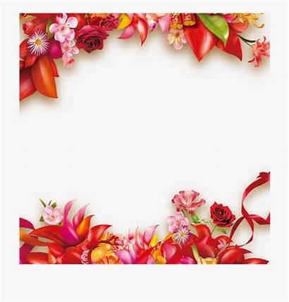 Borders Border Flower Nature Flowers Garden Frames