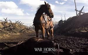 How War Horse succeeds