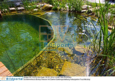 Details Zu #0003192369  Schwimmteich Biotop Wasser Im