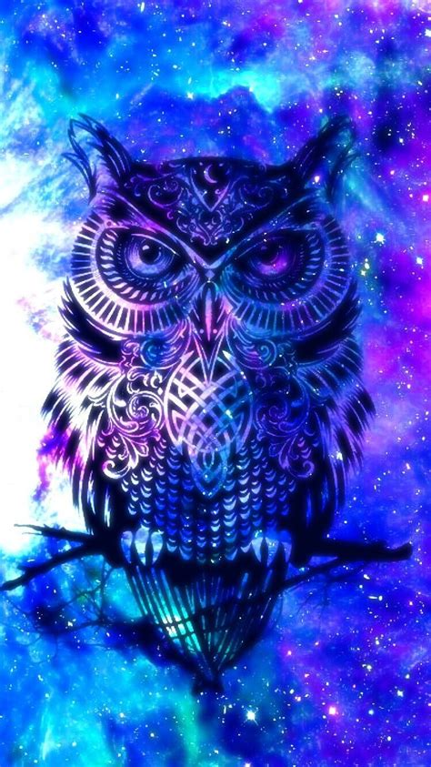 Owl Phone Wallpapers by Owl Iphone Wallpapers Top Free Owl Iphone Backgrounds
