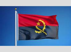 Flag From The Republic Of Bhutan Stock Footage Video
