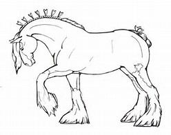 HD Wallpapers Clydesdale Horse Coloring Pages To Print