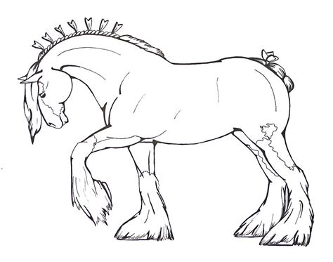Friesian Horse Coloring Pages Dutch Rabbit