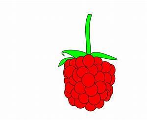 Raspberry Clip Art - Cliparts.co