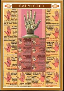 Easy Reference Guide For Palm Reading  You Can Now Read