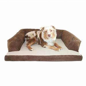 comfy couch pet bed dog beds dog and airedale terrier dog With big comfy dog beds