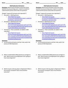 Dna Replication Worksheet  U2013 Tch The Animations And Answer