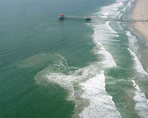 Visitor Safety Alert  What Are Rip Currents In Hawaii