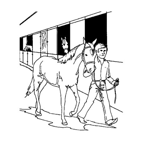 Kleurplaat Paarden Manege by Leuk Voor Op De Manege