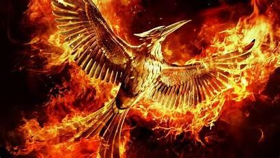 Hunger Games Mockingjay Katniss Panem Tribute 1080