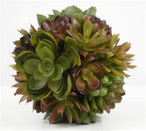images  faux succulents  pinterest vase