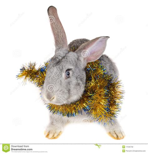rabbit  christmas decorations stock photography image