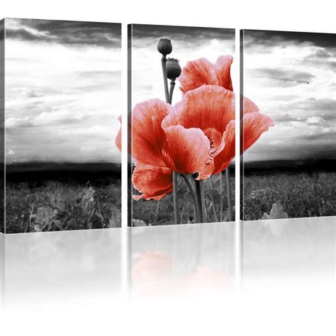 bilder auf leinwand bilder mohnblume auf der wiese bilder auf leinwand blumen
