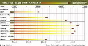 Ammo And Gun Collector Rifle Caliber And Shotgun Load