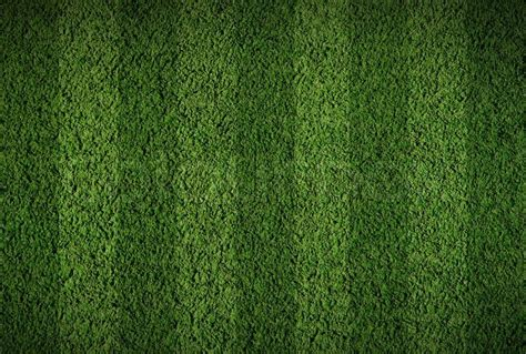 home plans with indoor soccer or football grass field stock photo colourbox